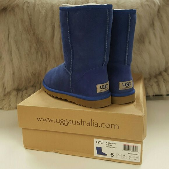 New Authentic Uggs Brand new in box, authentic blue, classic short uggs. Size 6. UGG Shoes