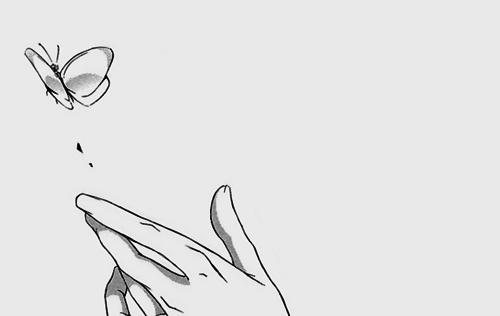 蝶 Via Tumblr Manga Drawing Anime Fantasy Drawings
