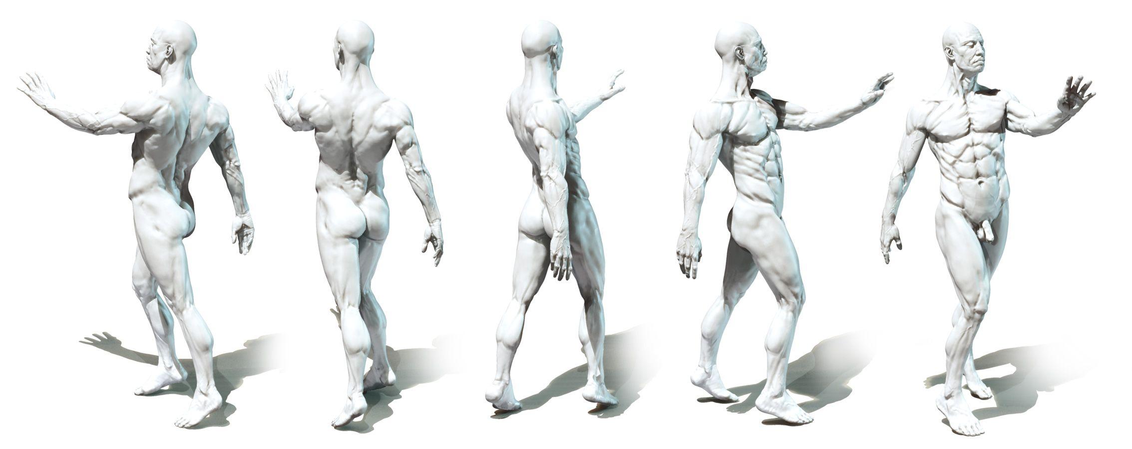 Anatomy Study Posing 1 By Mojette Drawing Tutorials Bones