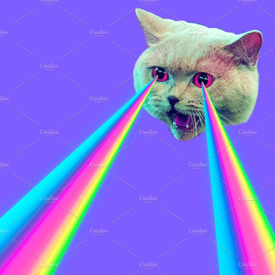 Evil Cat With Rainbow Lasers From Ey Evil Cat Cool Artwork Cat Laser