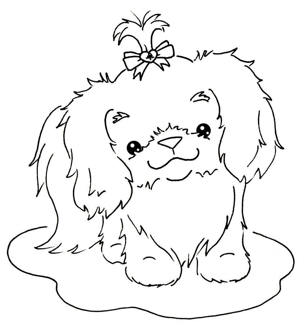 cute shih tzu coloring pages dinsdag 5 oktober 2010 - Shih Tzu Coloring Pages