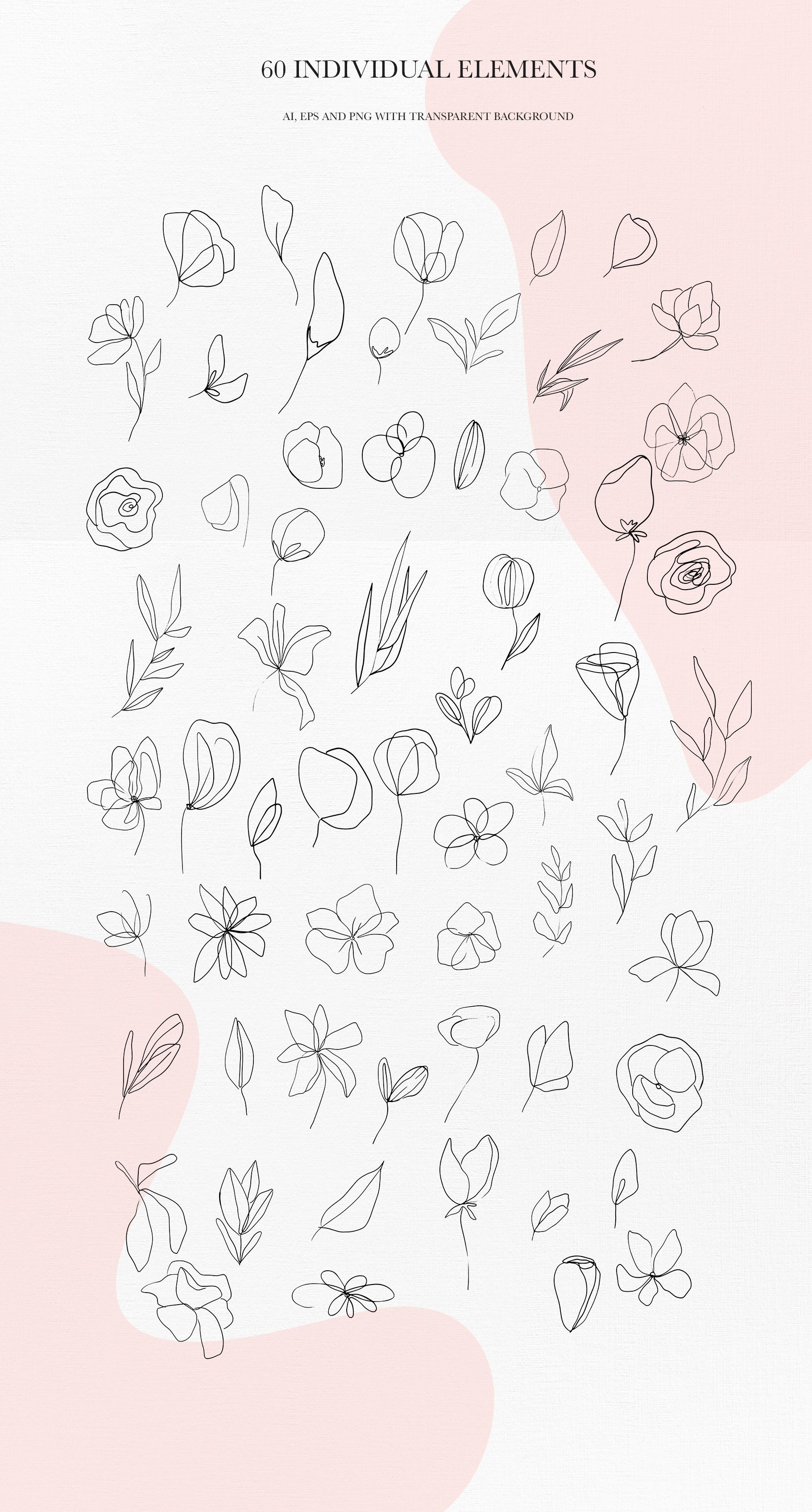 Botanical line art clipart by AnastasiiaCo on