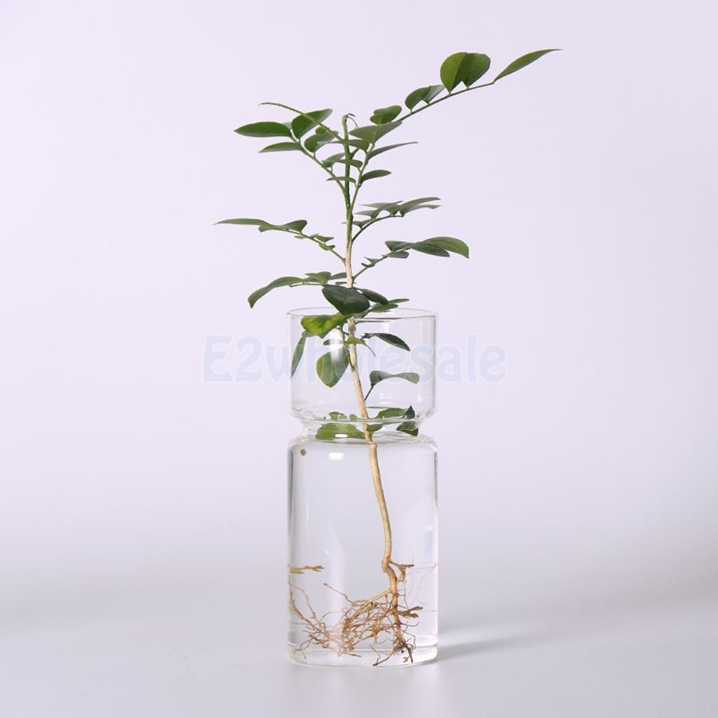 4Pcs Clear Home Decorative Landscape Vase Crystal Hydroponic Container