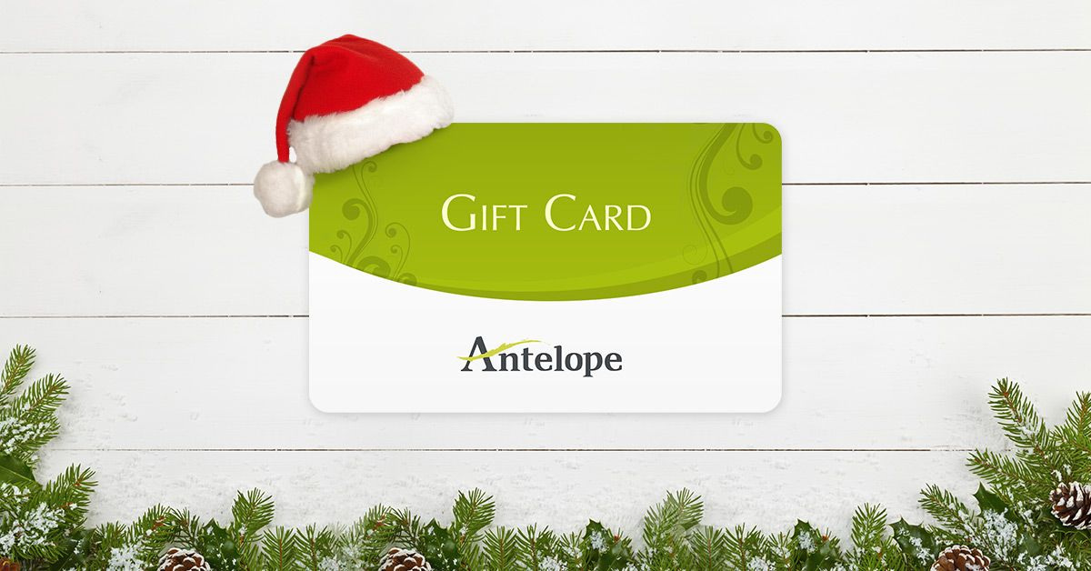 The perfect gift for Christmas is the gift of choice with our very own gift e-card!