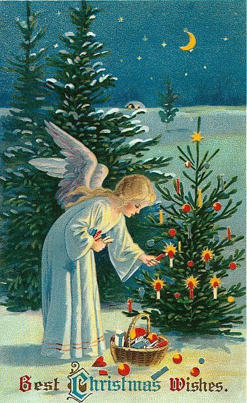 §§§ : victorian angel : ca.1900: