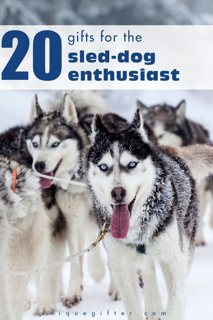 20 Gifts For The Sled Dog Enthusiast Dogs Gifts Christmas Dog