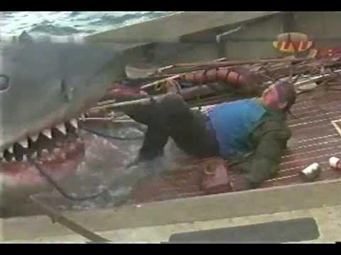 1916, el verano del tiburón (documental de historia) european spanish (2 de 4) - YouTube