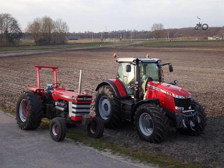 Massey Ferguson Girls : Massey ferguson tractors pinterest