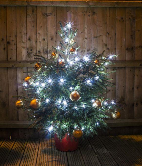"""Photo """"ChristmasTreeOutside"""" by roadrunner911"""