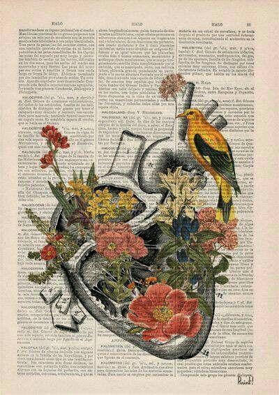 Pin von Beyza 🎶 auf Güzellikler | Pinterest