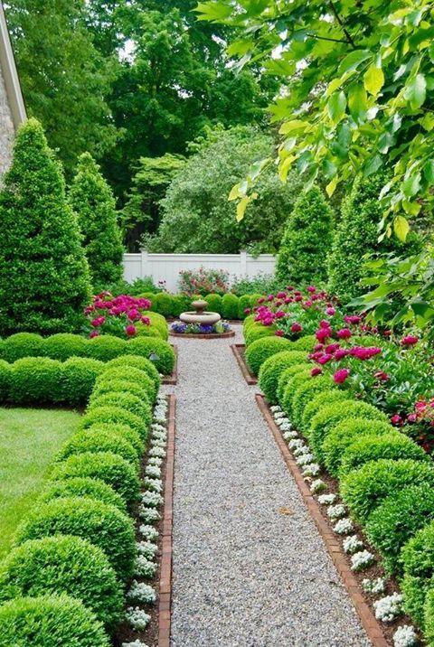 Tulip front yard   Front landscaping, Tulips, Backyard garden