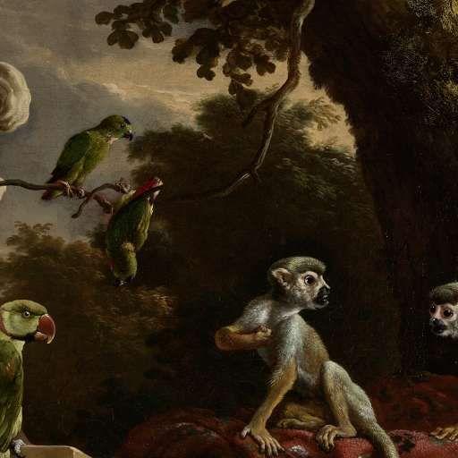 The Menagerie, Melchior d' Hondecoeter, c. 1690 - vogels-Collected Works of Rebecca de Rooy - All Rijksstudio's - Rijksstudio - Rijksmuseum