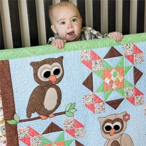 Cute Hoots: Quick Adorable Fusible-Appliqué Owl Baby Quilt Pattern ... : owl applique quilt pattern - Adamdwight.com