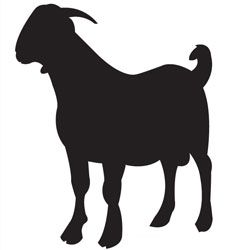 Boer Goat Outline Clipart Panda Free Images