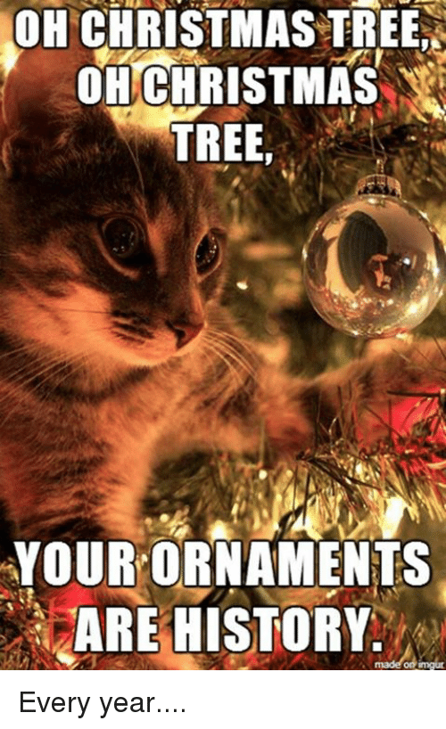 Memes Christmas Tree And History Oh Christmas Tree Oh Christmas Tree Your Ornament Christmas Cat Memes Christmas Memes Funny Funny Christmas Pictures