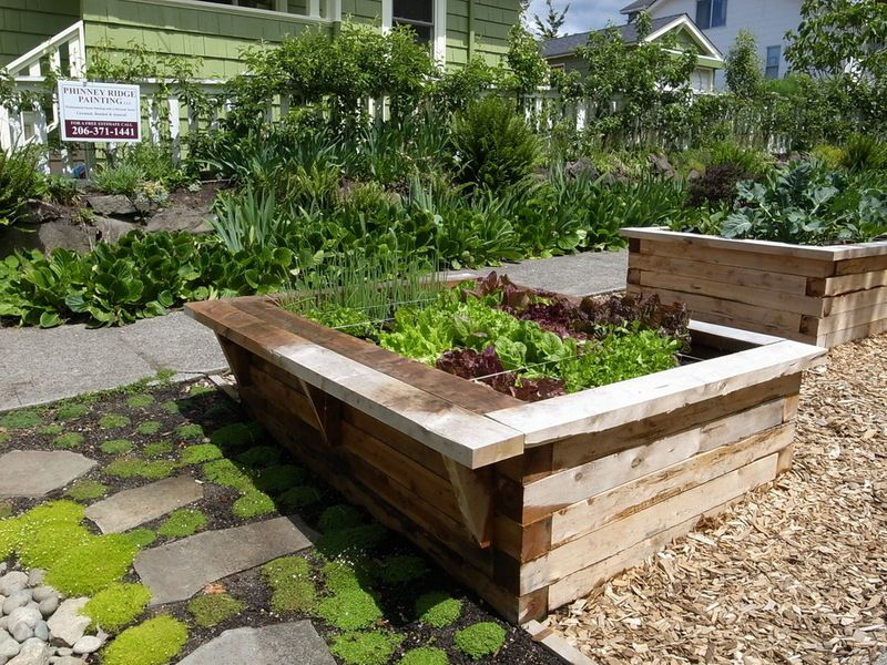 How to build a raised garden bed - traditional landscape by Erin Lau Landscape  Design- Seattle - How To Build A Raised Garden Bed - Traditional Landscape By Erin Lau