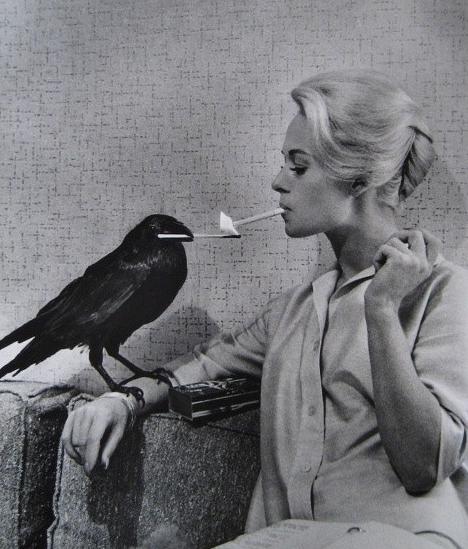 1960s, tippy hedren