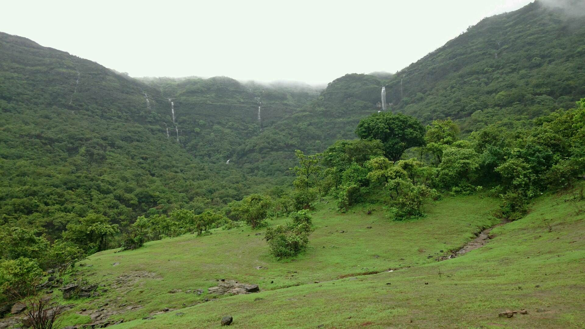Waterfalls and greenery in the mountains of Mulshi India [OC