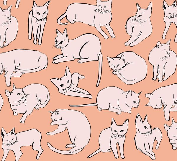 Picasso Cats | Leah Goren