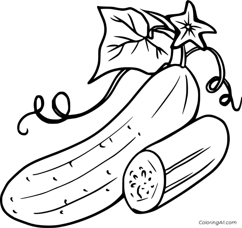 26 Free Printable Cucumber Coloring Pages In Vector Format Easy To Print From Any Device And Leaf Coloring Page Vegetable Coloring Pages Fruit Coloring Pages