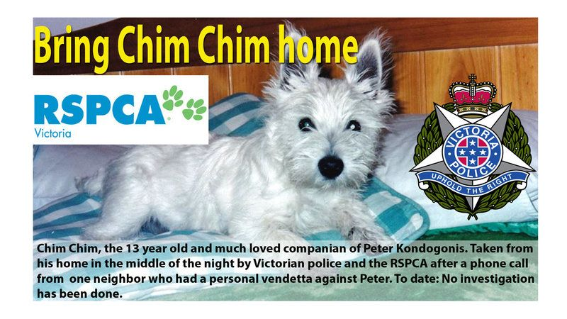 Tell The Rspca To Bring Chim Chim Home Animal Abuse Furry Friend Bring It On
