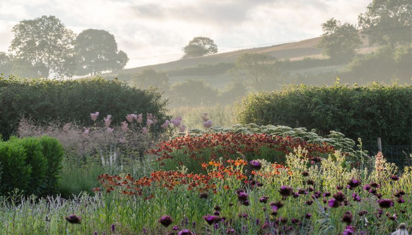 Garden designed for hauser wirth somerset by piet oudolf for Landscapes in landscapes piet oudolf
