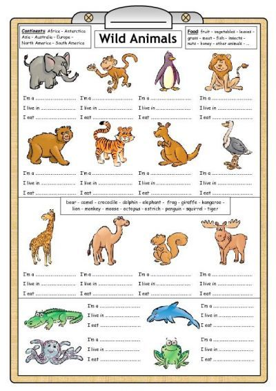 free primary animal worksheets | Animals Reading | animals | English ...
