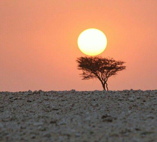 السهر يستوطن عيون من صدره حزين والهوى من نظرة العين يجتاح الصدور يعترينا الشوق وان هبت رياح الحنين ماجدانا غير ندري متى آخ Celestial Celestial Bodies Sunset