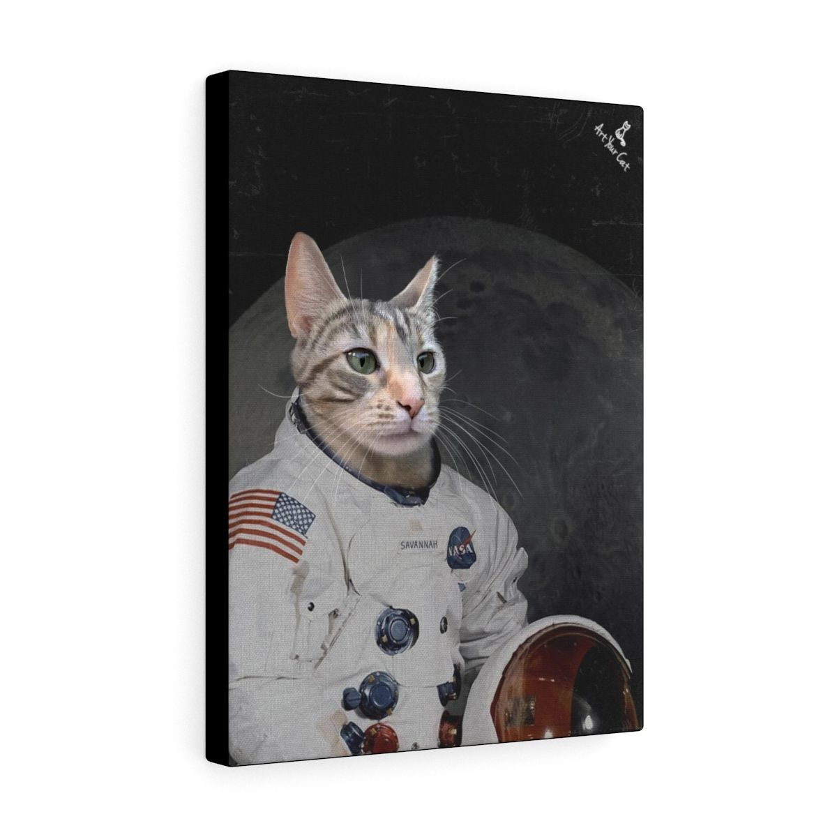 Art Your Cat Custom Cat Lovers Gifts We Accept All Pets But