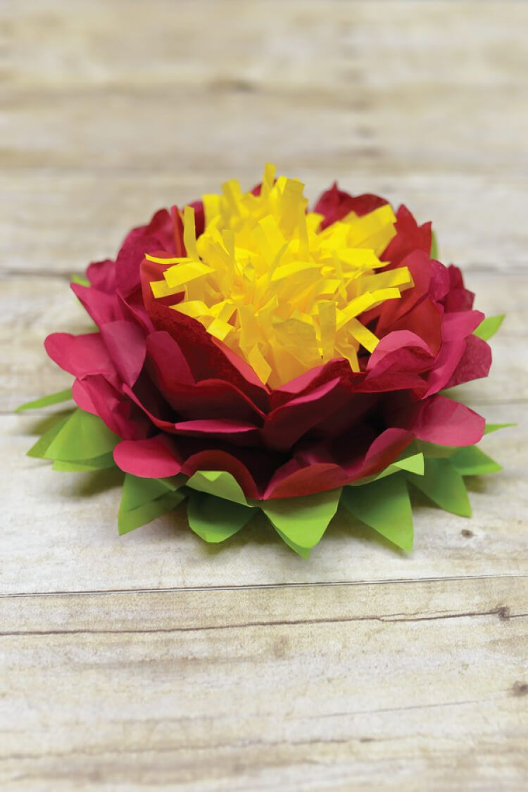 Tricolor tissue paper flowers are easy to make Perfect simple
