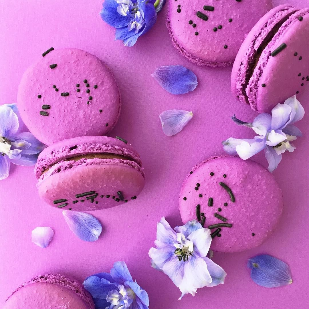 """Jenna Rae + Ashley Nicole on Instagram: """"#macarons are all gone for the day, but we'll have more tomorrow at 12noon!  #jennaraecakes #winnipegbakery open until 6 #jrcmacarons"""""""