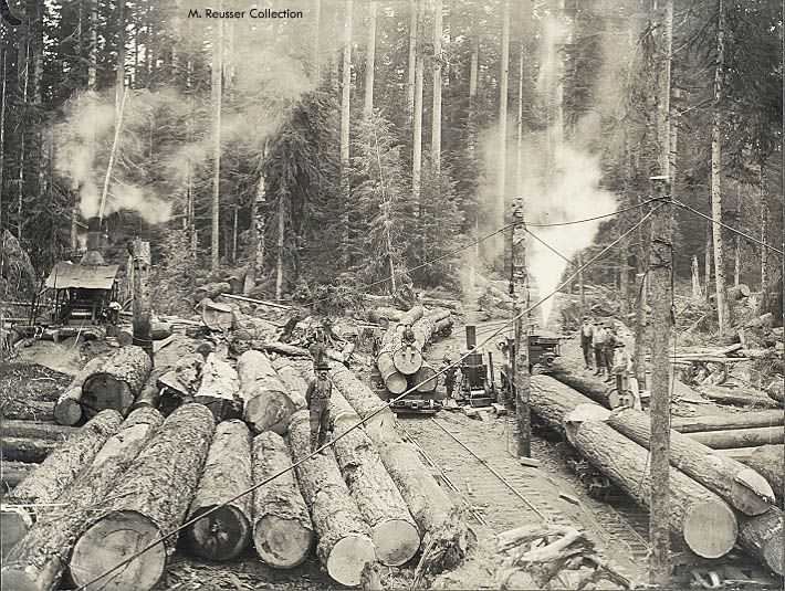 oak point camp