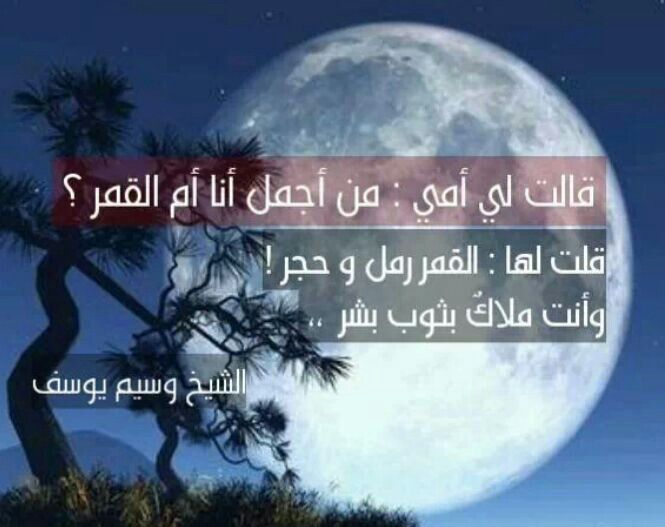 الشيخ وسيم يوسف Arabic Words Words Quotes