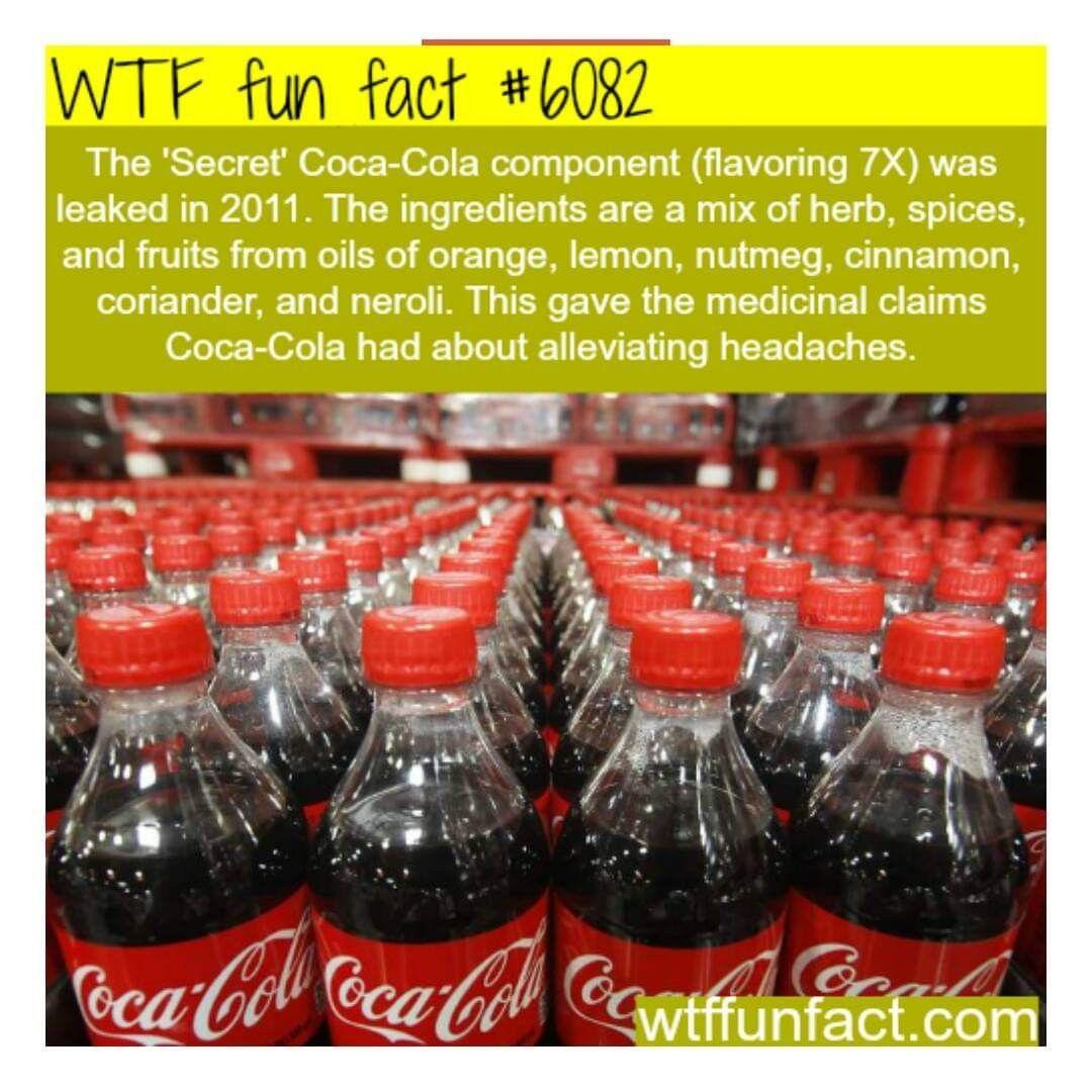 Pin On Wtf Fun Facts