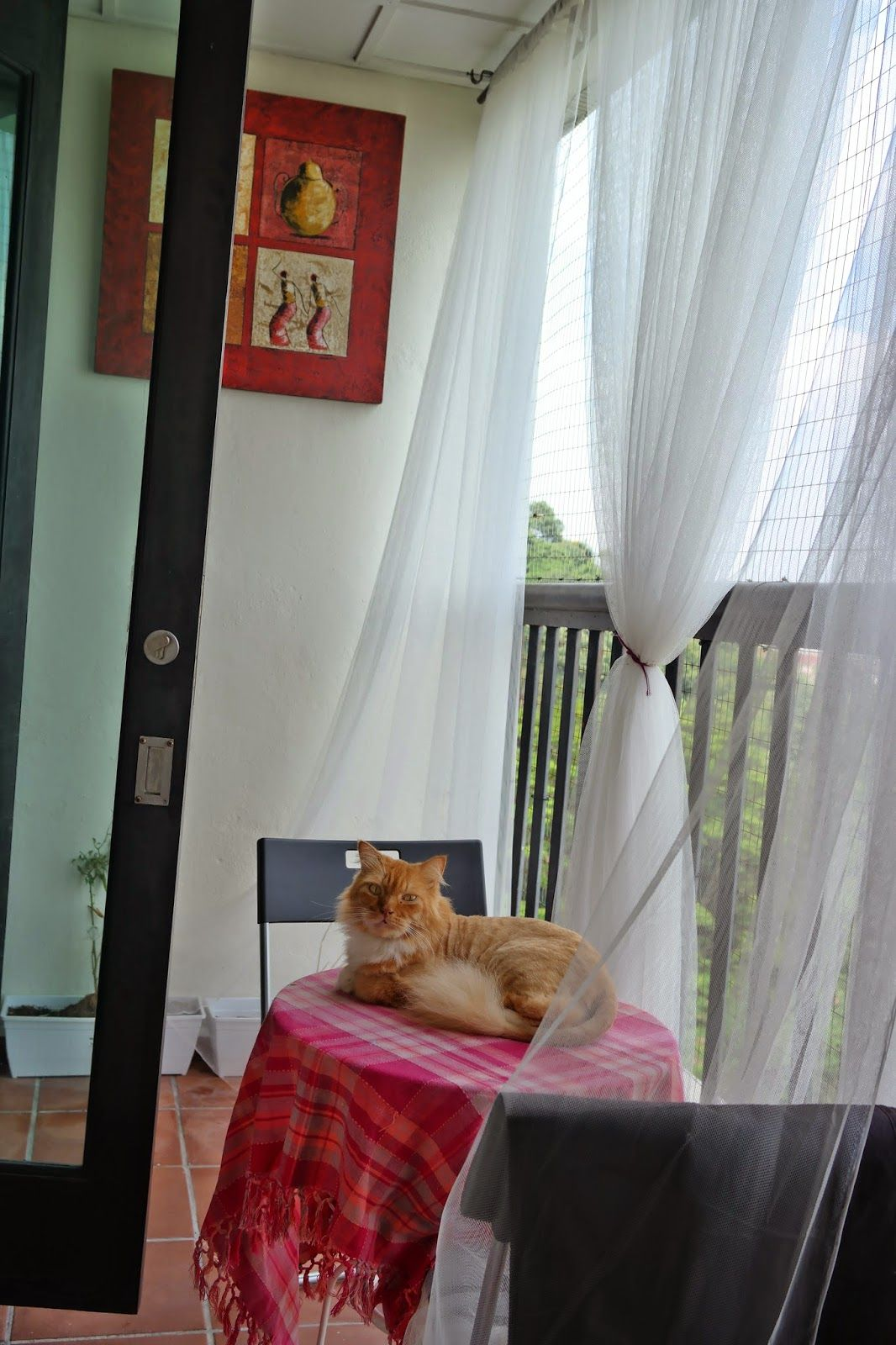 Apartment patio curtains - Outs And Abouts Catification Transform The Apartment Balcony To Be A Safe Place For