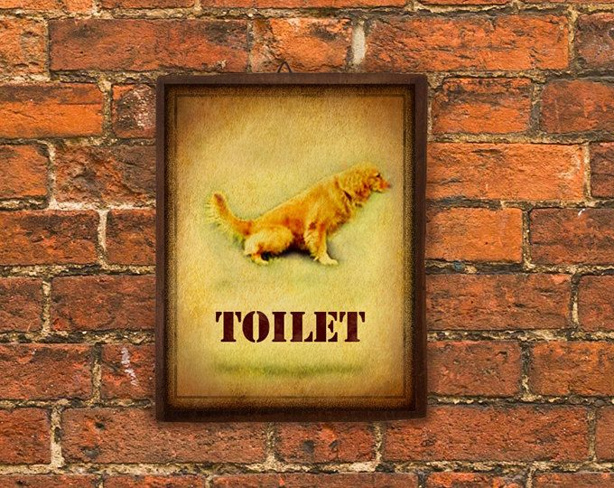 . Toilet Sign    Dog Sign  Dog toilet Sign  Funny Sign  Decor Bathroom