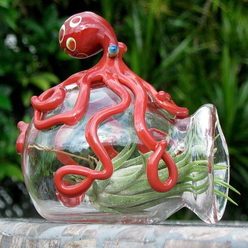 Hand Blown Glass Terrariums With Octopus Part 39