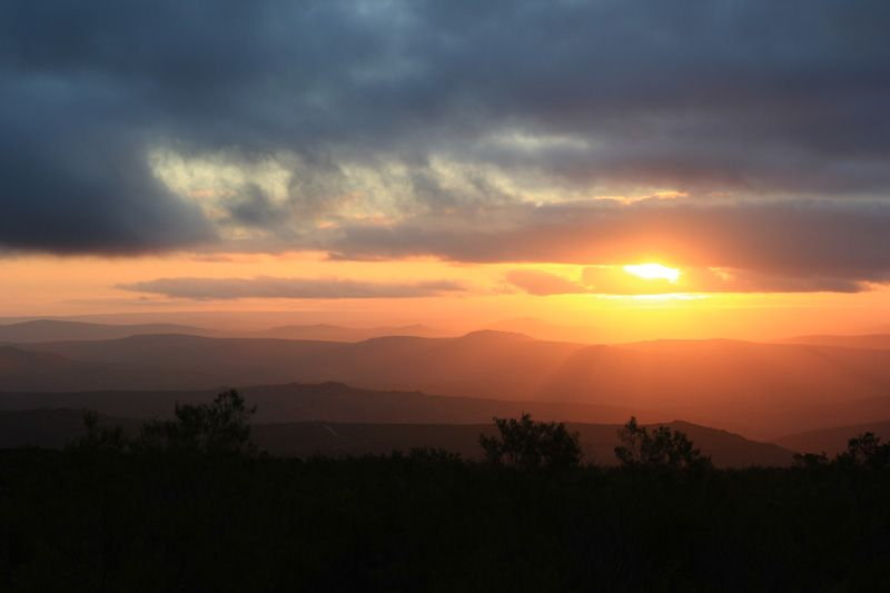 Sunset in the Namaqualand Park
