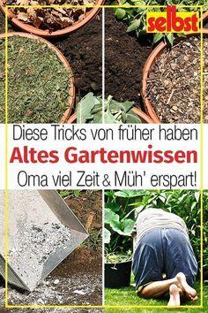 Gartnertipps Selbst De Garten Garten Bepflanzen Gartentipps