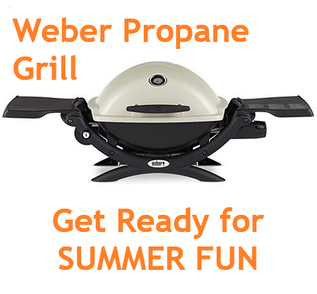 Weber 51060001 Q1200 Liquid Propane Grill 209 In 2020 Beach House Design Beach House Decor Beach Kitchens