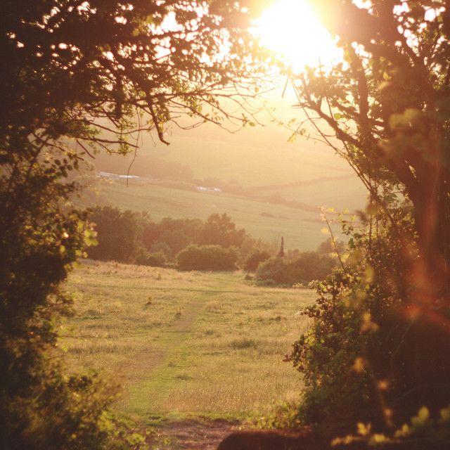 lovely light. south wales, uk.