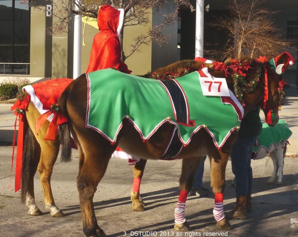 Image result for christmas parade horse costumes