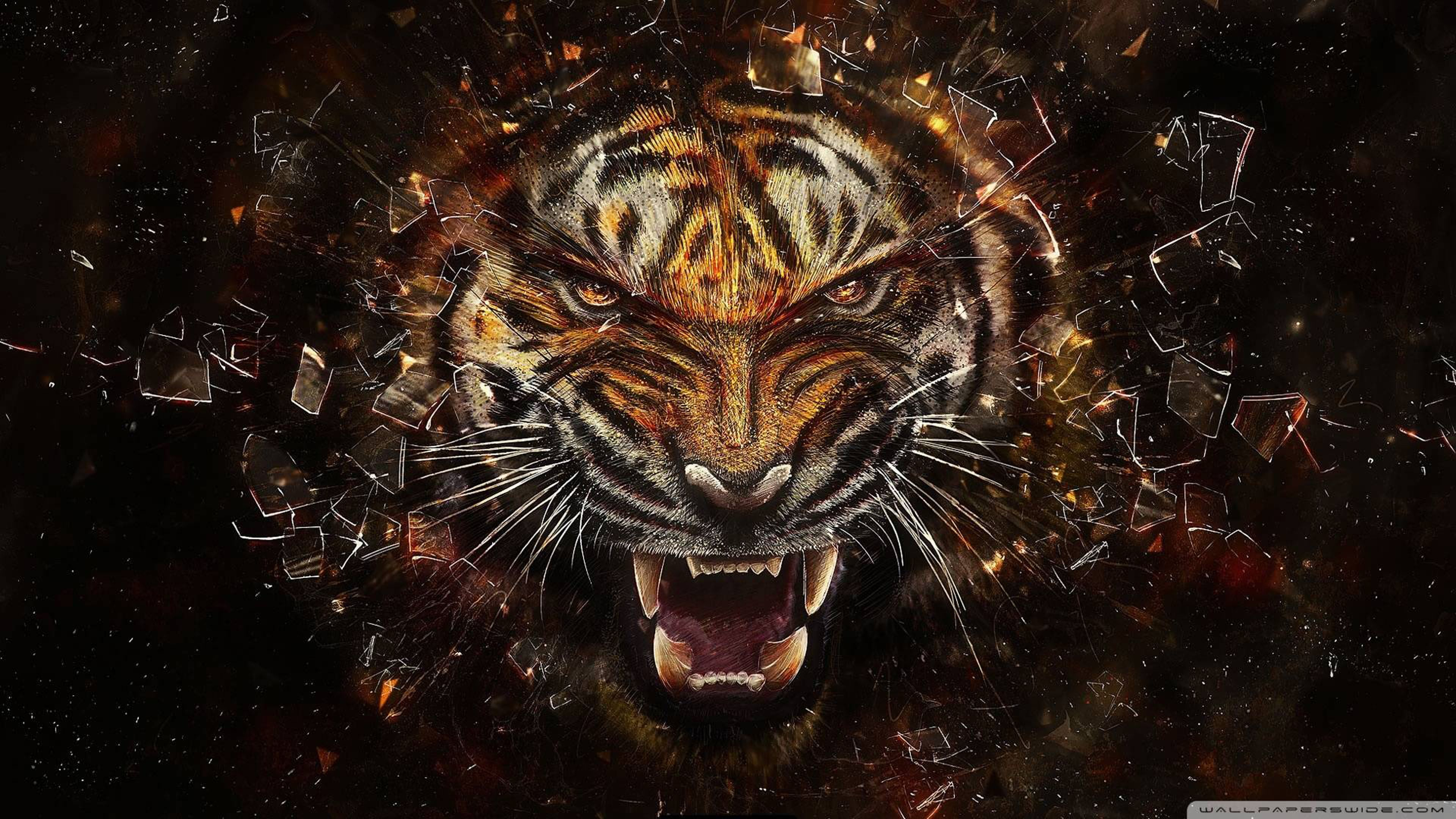 Roaring Tiger Ultra Hd 4k Wallpaper Tiger Images Angry Tiger Tiger Wallpaper