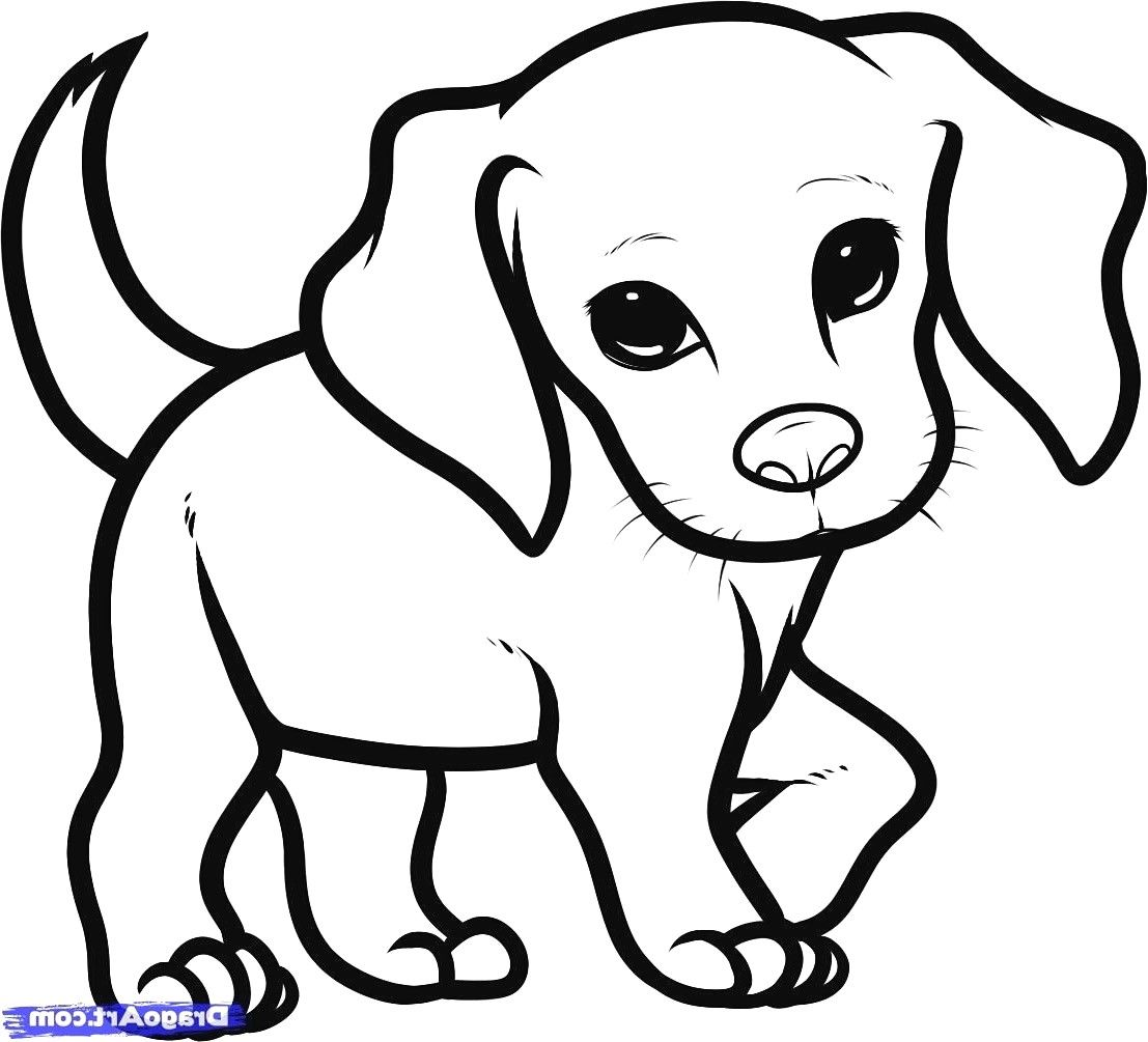 Adorable Puppy Coloring Pages Cute Drawing Of A Puppy 9 Puppy Sketch Dog Drawing Simple Cute Dog Drawing