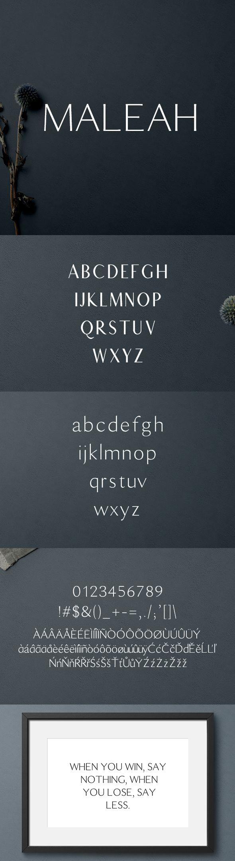 Download Maleah Sans Serif 2 Font Family Pack #font #typography # ...