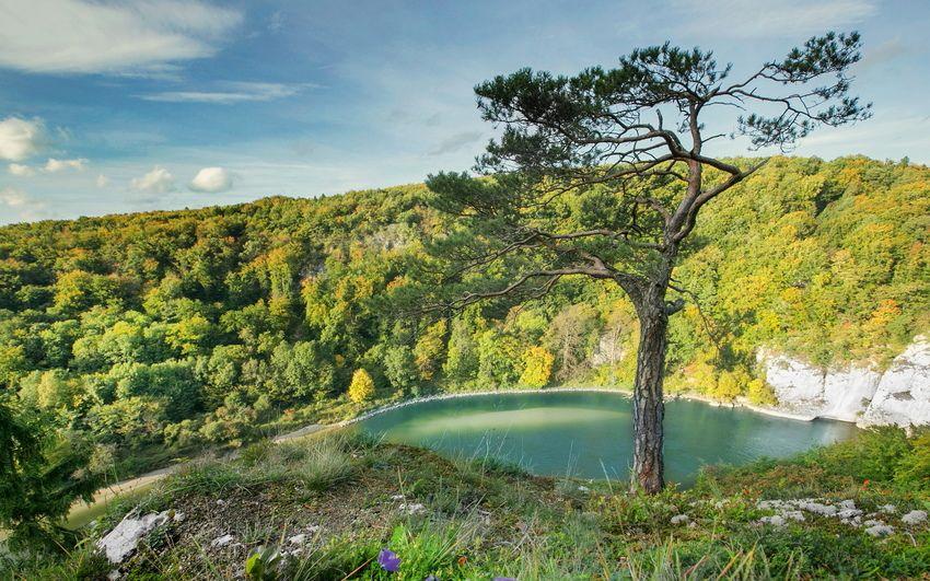 река, деревья, горы | Озера, Река, Обои