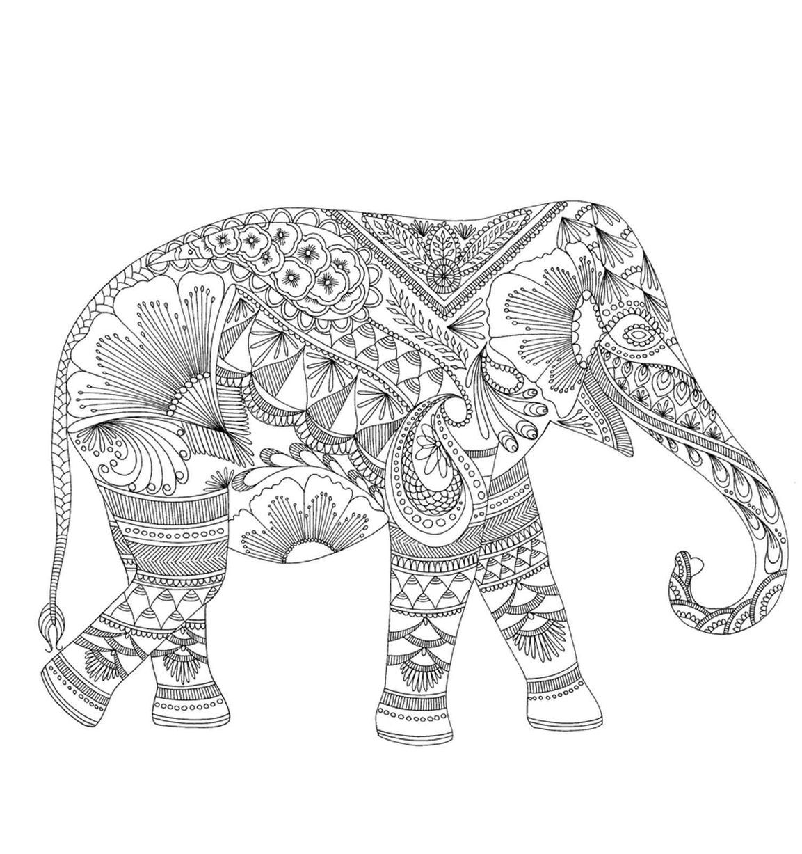 Millie Marotta S Designs Dieren Kleurplaten Olifant Tekening Kleurplaten