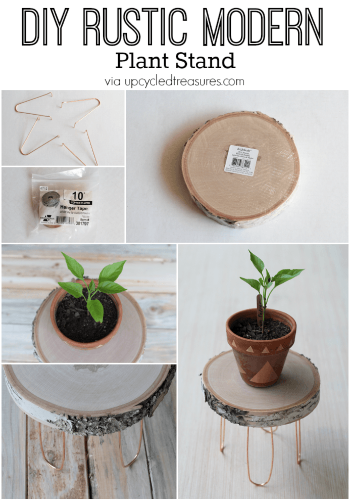 Photo of DIY Rustic Modern Plant Stand
