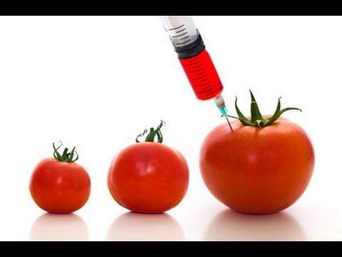 Say no to GMO - #Health #FDA #GMO #NoGMO - No a los TRANSGENICOS  #Farming #Gardening #Food