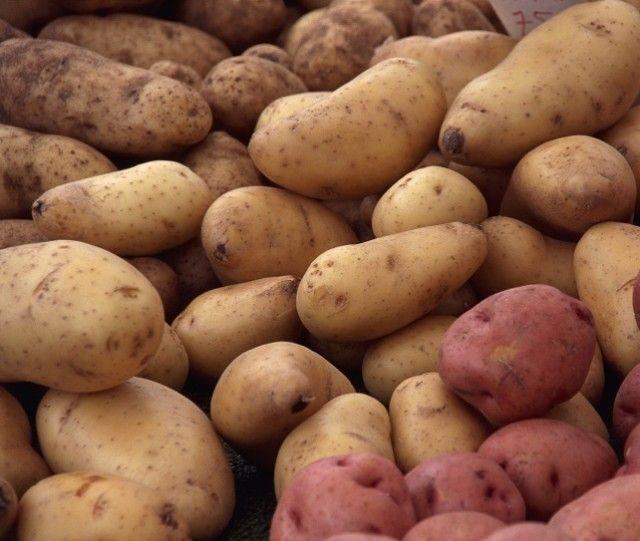 Na geladeira, o amido da batata é convertido em açúcar mais rapidamente, fazendo que ela fique mais doce e farinhenta. Guarde o tubérculo em local com boa ventilação e envolva-o em papel pardo para aumentar sua vida útil.